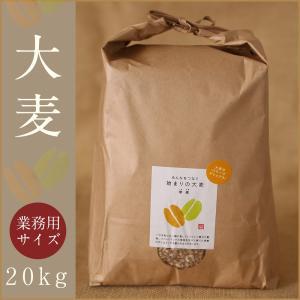 自社農園スコットランド産大麦21kg(3.5kg×6) 潮麦 丸麦 麦ご飯 デトックス お菓子 fukui-koshino