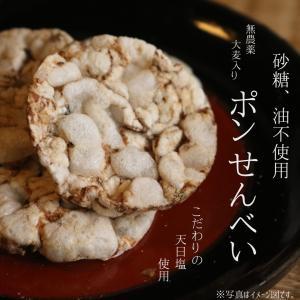 麦童(大袋500g)|fukui-koshino