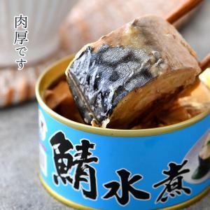 鯖水煮缶詰 6缶入|fukuican|03