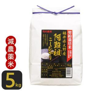お米 阿難祖コシヒカリ5kg  福井県大野産 白米29年産 特A 送料無料|fukuikomeya
