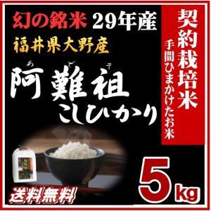 お米 5kg 阿難祖コシヒカリ 福井県大野産 白米 29年産 特A 送料無料|fukuikomeya