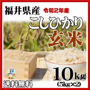 お米10kg 玄米 福井県産コシヒカリ 10kg 29年産 送料無料|fukuikomeya