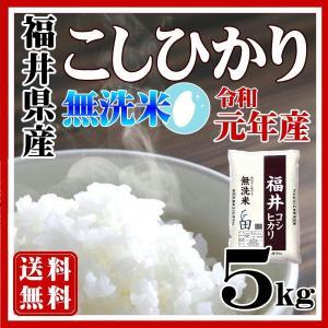 お米 無洗米5kg コシヒカリ 福井県産29年産 白米特A 送料無料 fukuikomeya