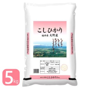 新米 5kg 福井県大野産コシヒカリ 5kg 特A 白米 送料無|fukuikomeya