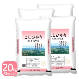 米20kg 福井県大野産コシヒカリ 20kg(5kg×4) 特A 白米 29年産 送料無料|fukuikomeya