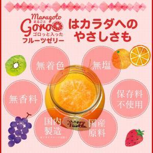 母の日 母の日ギフト プレゼント ギフト  希少糖入フルーツ ゼリー 5個入 内祝い|fukukame|10