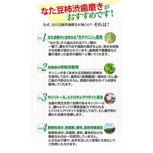 歯磨き粉 薬用 なたまめ 柿渋 口臭予防歯磨き 歯周炎防止 国内産|fukumimi-shoten|04