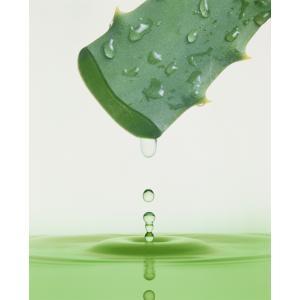 美容液 アロエ 水 おしろい 化粧水 アロエ 米ぬかエキス はと麦エキス クレンジング不要 しっとり肌|fukumimi-shoten|04