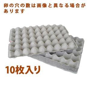 紙製卵トレー 10枚セット■コオロギやミルワームの隠れ家などに最適です。飼育ケースに合わせてハサミで...