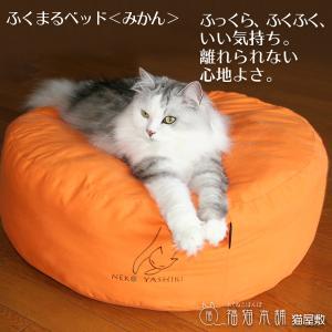 ふくまるベッド みかん 猫さんの大型ベッド|fukunekohonpo