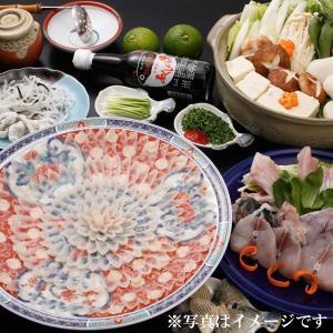 冷蔵便 天然物 活とらふぐ とらふぐ宅配Aセット 33cm陶器絵皿 4-5人前 天然 とらふぐ刺身 ふぐちり 皮刺し ふぐヒレ fukunosato