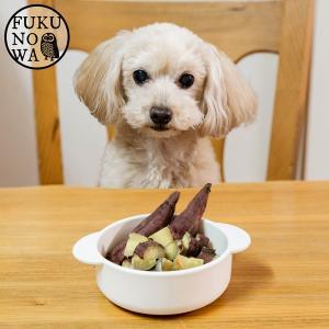 【送料無料】ペットのおやつ さつまいも 紅はるか 1kg 宮崎県産 熟成サツマイモ 生芋|fukunowa|04
