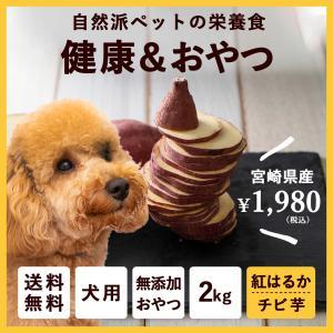 【送料無料】ペットのおやつ さつまいも 紅はるか 2kg 宮崎県産 熟成サツマイモ 生芋|fukunowa