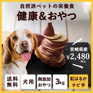 【送料無料】ペットのおやつ さつまいも 紅はるか 3kg 宮崎県産 熟成サツマイモ 生芋 fukunowa