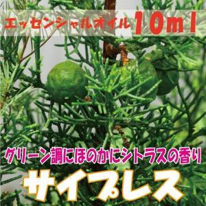サイプレス (10ml)  エッセンシャルオイル|fukuoka-soleil-shop