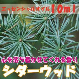 シダーウッド (10ml)  エッセンシャルオイル|fukuoka-soleil-shop