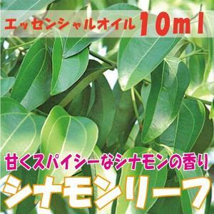 シナモンリーフ (10ml)  エッセンシャルオイル|fukuoka-soleil-shop