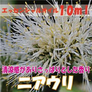 ニアウリ (10ml) エッセンシャルオイル|fukuoka-soleil-shop