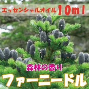 ファーニードル (10ml) エッセンシャルオイル|fukuoka-soleil-shop