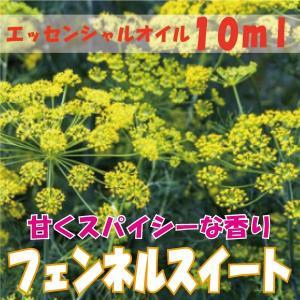 フェンネルスイート (10ml) エッセンシャルオイル|fukuoka-soleil-shop
