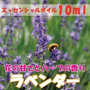 ラベンダー (10ml) エッセンシャルオイル|fukuoka-soleil-shop
