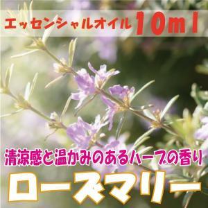 ローズマリー (10ml) エッセンシャルオイル|fukuoka-soleil-shop