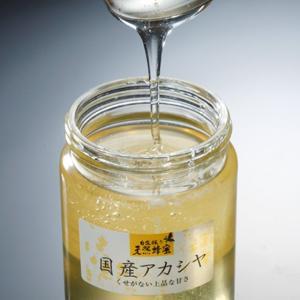 数量限定20%OFFクーポン配布 国産天然アカシヤ蜂蜜 お中元/お歳暮/贈答品/ギフト/福島/送料込 ふくしまプライド。体感キャンペーン(その他)|fukushima-ichiba