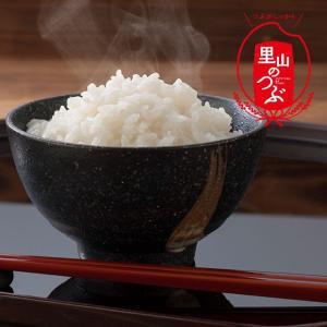 会津産 里山のつぶ 10kg(H30年産) お中元/贈答品/ギフト/福島/送料込|fukushima-ichiba