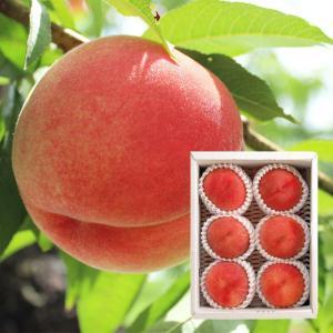 【予約販売】あいはら果樹園 旬の桃(小箱)<7月中旬より順次お届けの季節限定商品> お中元/贈答品/ギフト/福島/送料込|fukushima-ichiba