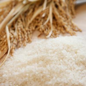 ミルキークイーン「農匠米」5kg(H30年産)|fukushima-ichiba