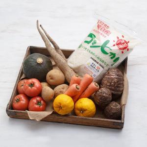 貝ミネラル栽培社米コシヒカリと季節の野菜果物セット  お中元/贈答品/ギフト/福島/送料込|fukushima-ichiba