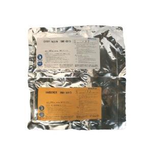 速硬化エポキシパティ XNR6915/XNH6915 500gセット|fukushimakk