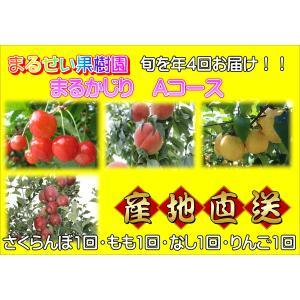 まるせい果樹園 まるかじりAコース|fukushimamarusei