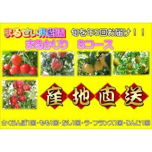 まるせい果樹園 まるかじりBコース|fukushimamarusei
