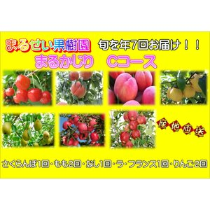 まるせい果樹園 まるかじりCコース|fukushimamarusei
