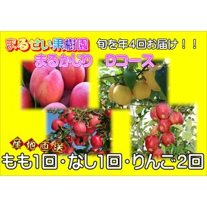 まるせい果樹園 まるかじりDコース|fukushimamarusei