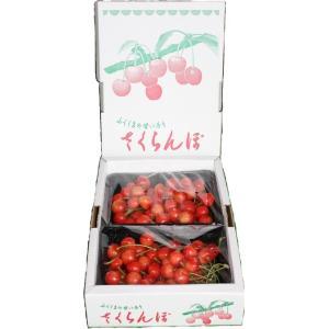 まるせい果樹園 さくらんぼ 佐藤錦 280g×2p入 ふぞろい|fukushimamarusei