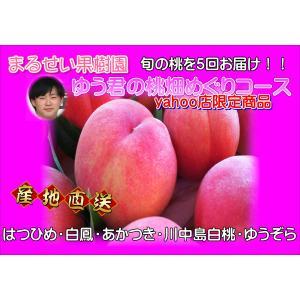 まるせい果樹園 ゆう君の桃畑めぐりコース|fukushimamarusei
