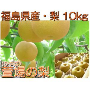 福島県 萱場産 20世紀 梨 10kg箱  (24〜36玉) 「ふくしまプライド。体感キャンペーン(果物/野菜)」|fukushimasan