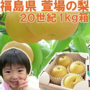 福島県 萱場産 20世紀 梨 1kg箱  (4〜5玉)|fukushimasan
