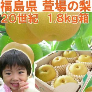 福島県 萱場産 20世紀 梨 1.8kg箱  (5〜7玉) 「ふくしまプライド。体感キャンペーン(果物/野菜)」|fukushimasan