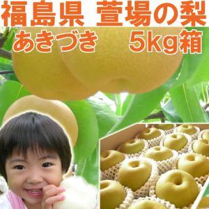 福島県 萱場産 あきづき 梨 5kg箱  (12〜18玉)|fukushimasan