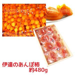 あんぽ柿540g箱(8〜12粒入) fukushimasan