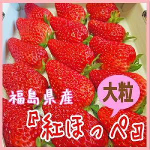 紅ほっぺ 4L〜5L|fukushimasan