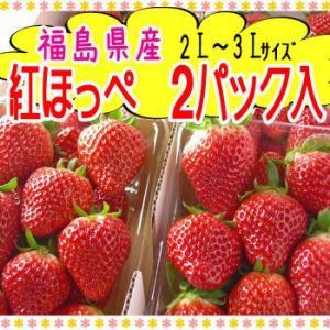 紅ほっぺ(2パック入)|fukushimasan
