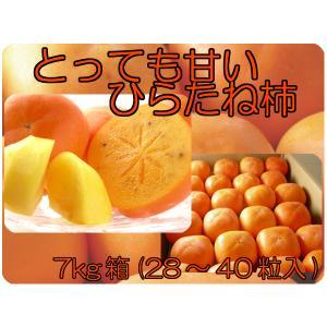 福島県 飯坂産 種なし ひらたね柿 7kg箱 (28〜40個入) 「ふくしまプライド。体感キャンペーン(果物/野菜)」|fukushimasan