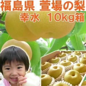 福島県 萱場産 幸水 梨 10kg箱  (24〜36玉)|fukushimasan