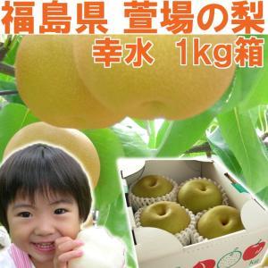 福島県 萱場産 幸水 梨 1kg箱  (4〜5玉)|fukushimasan