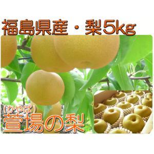 福島県 萱場産 幸水 梨 5kg箱  (12〜18玉)|fukushimasan