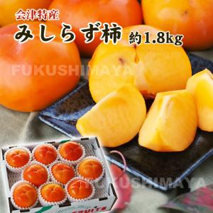 福島県 会津特産 みしらず柿 1.8kg箱 (6〜9粒入)|fukushimasan